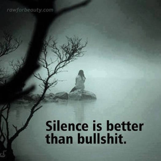 Others Silence is better than bullshit