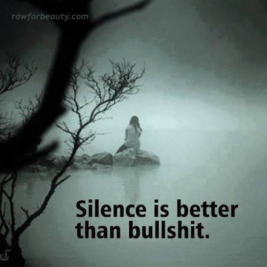 Others Silence is better than bullshit