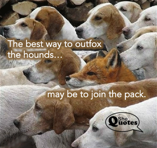 #SheQuotes outfox the hounds