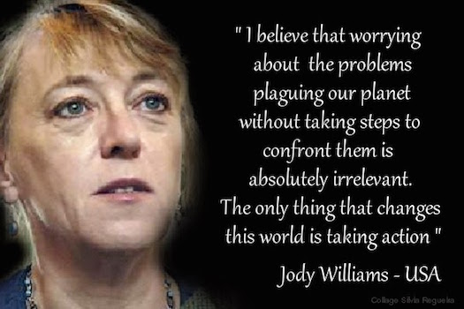 Jody Williams worry is irrelevant